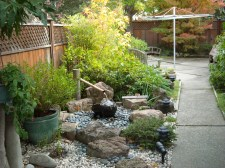 Photos of our Japanese Gardens